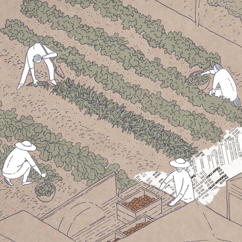 FARMER SCHOOL