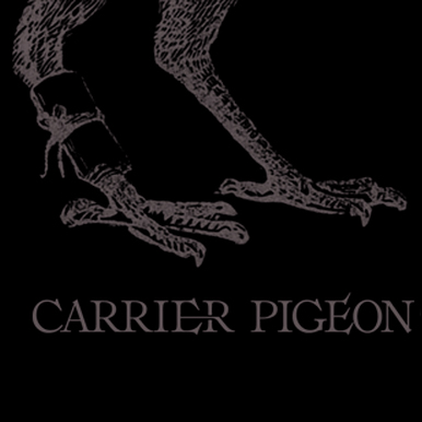 Carrier Pigeon Volume 2 Issue 2 Review, 2012