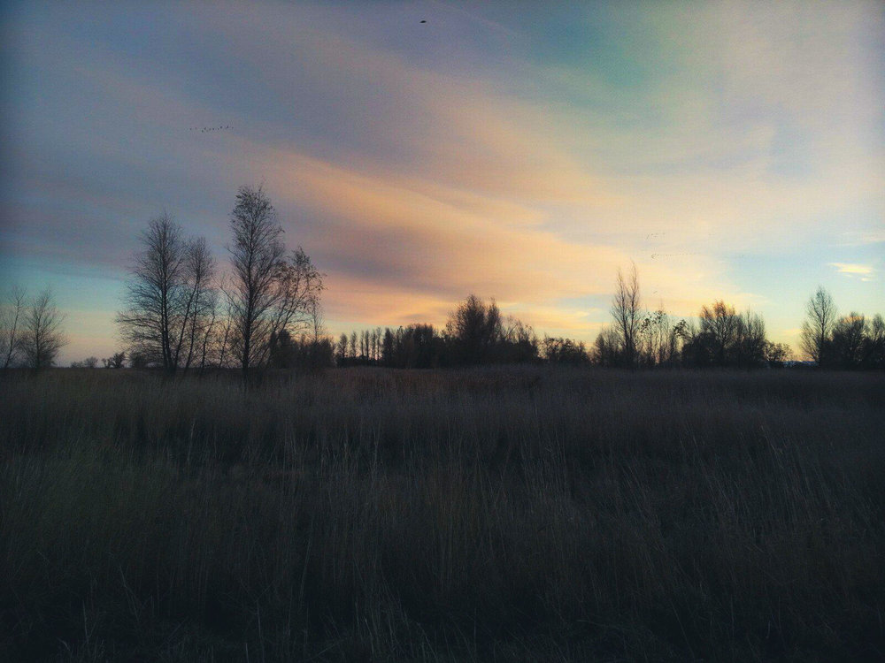 winter-1-2.jpg
