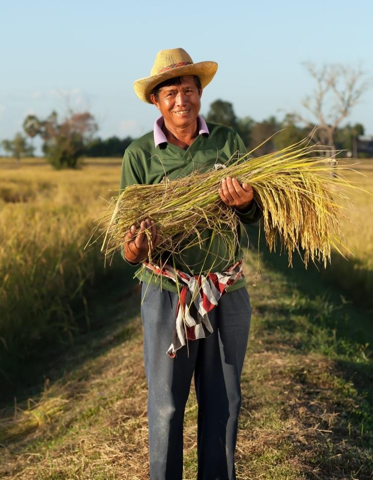 ลุงสุพรรณผู้เข้าร่วมโครงการโครงการเกษตรเข้มแข็งจากจ. มหาสารคาม