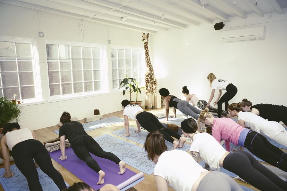 the-ww-club-sky-ting-yoga-womens-day-ting4.jpg