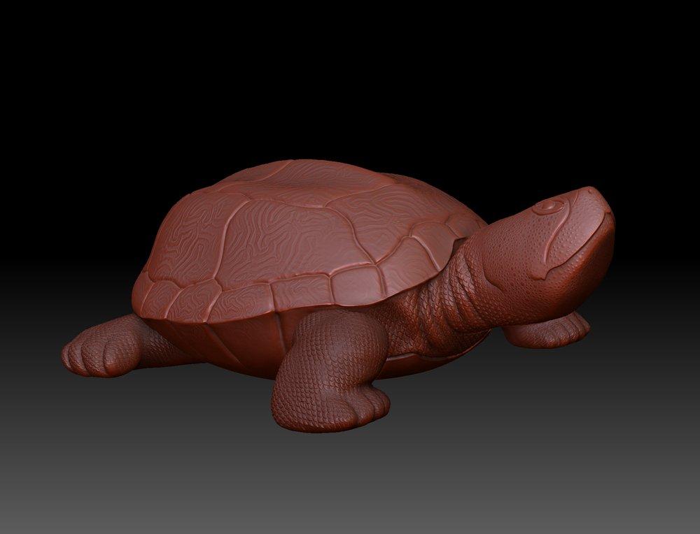 turtle_render.jpg