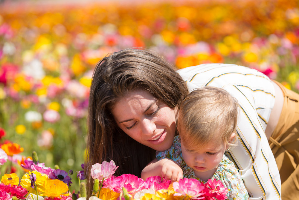 Family_Carlsbad Flower Fields-20.jpg