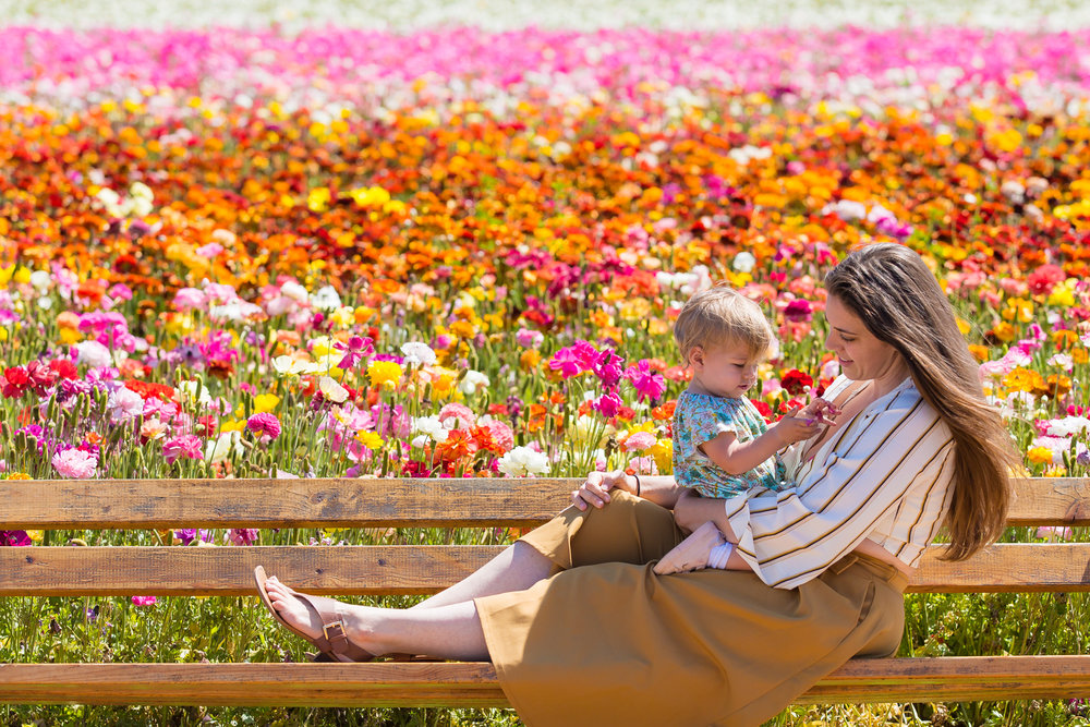 Family_Carlsbad Flower Fields-27.jpg