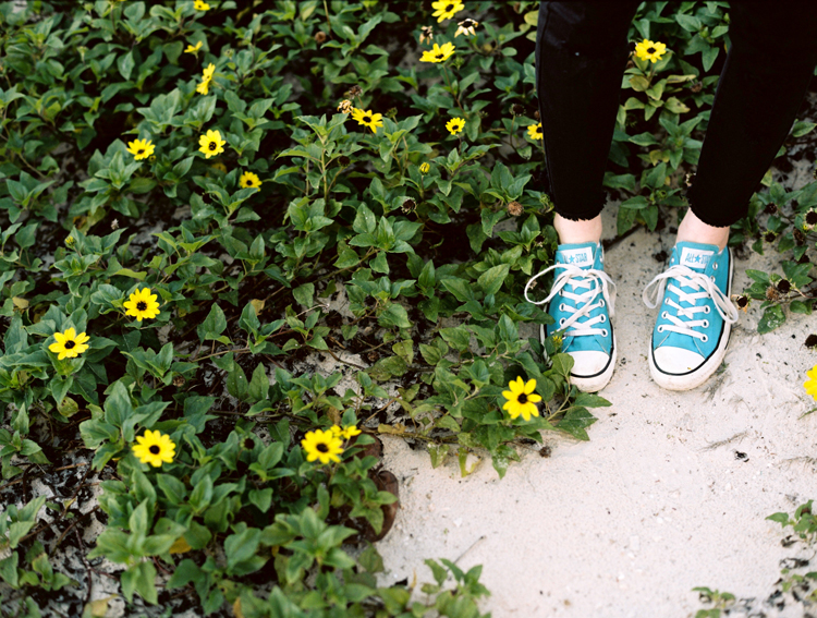 blue-converse-and-yellow-daisies.jpg