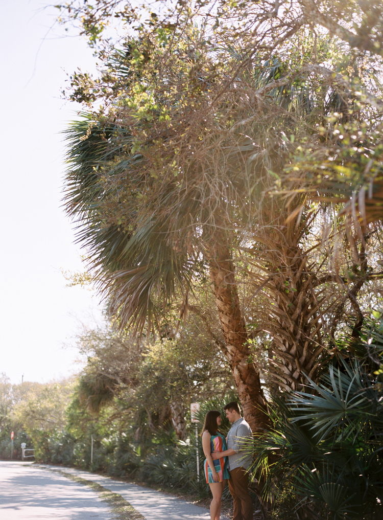 couple-cuddling-under-palm-tree.jpg