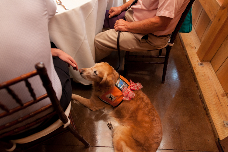 service-dog-at-wedding-deland-fl.jpg