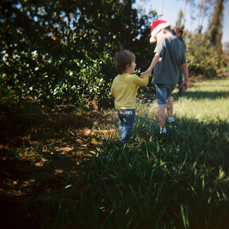 orange-orchard-florida-family-photographer-e-m-anderson.jpg