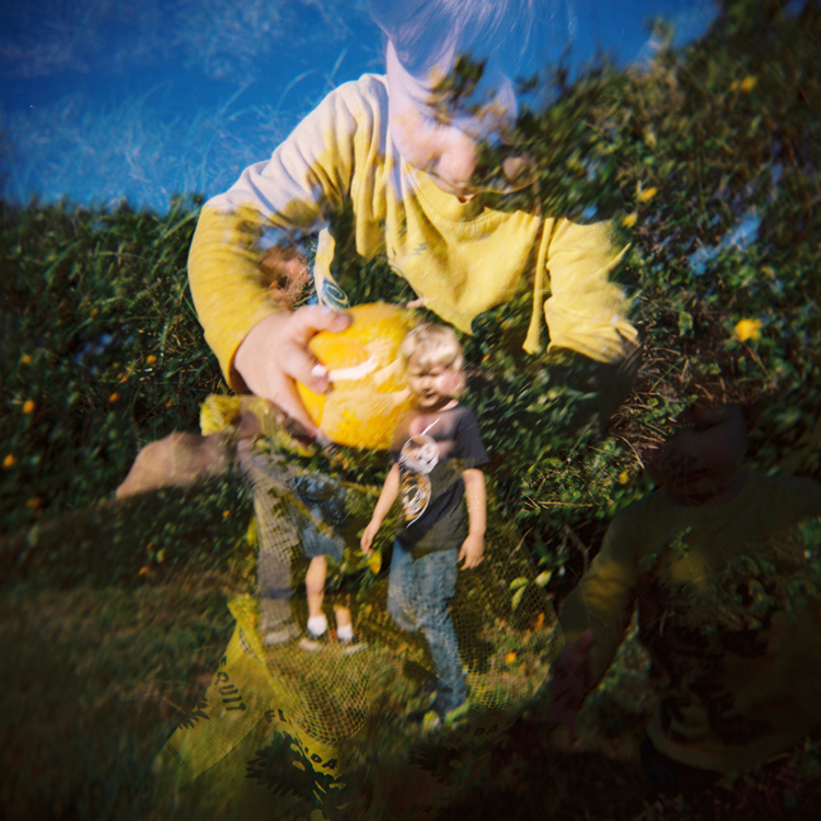 orange-picking-double-exposure-holga-camera.jpg