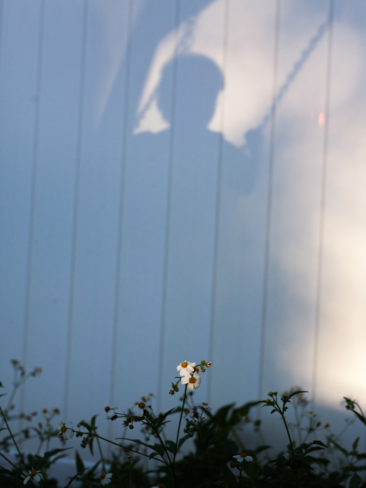 swinging-child-shadow-jacksonville-florida.jpg