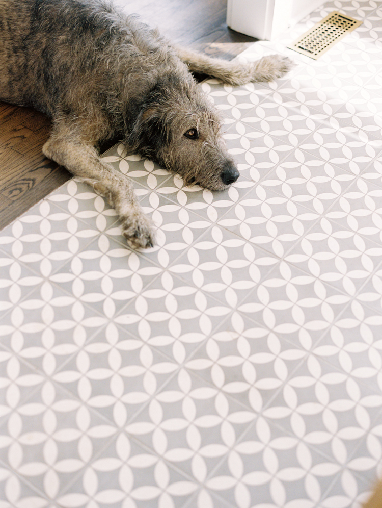 Irish-wolfhound-resting-on-tile-floor.jpg