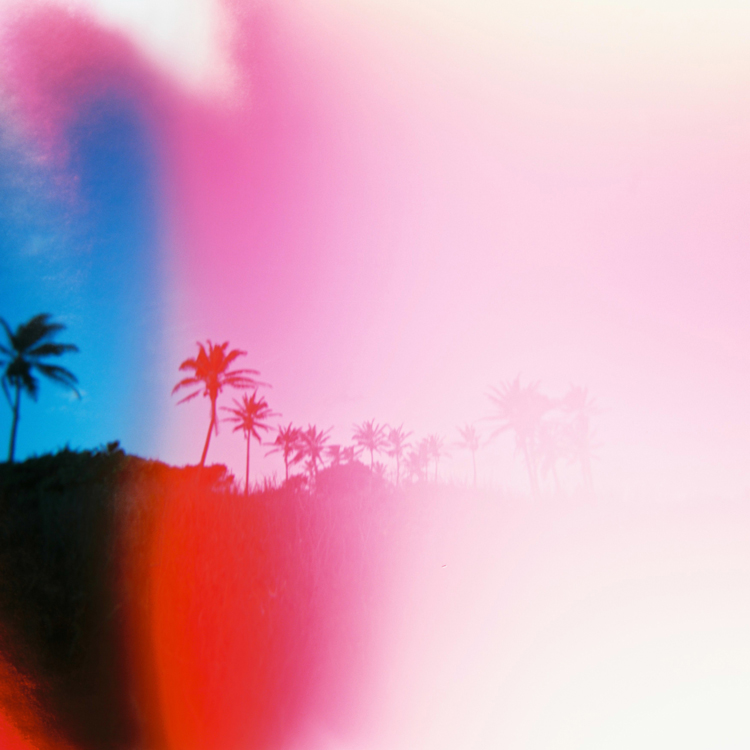 palm-trees-pink-light-leaks-hawaii.jpg