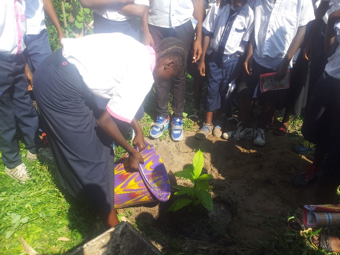 Student Ntumba Nadege watering the cacao tree