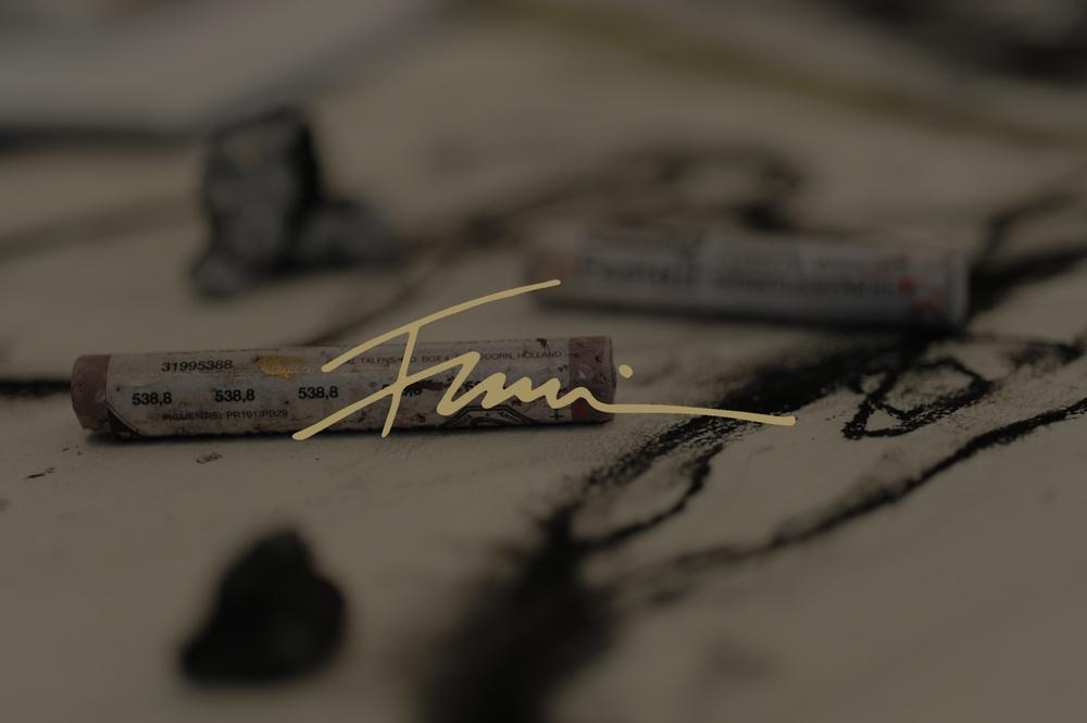 francine-turk-chicago3.jpg