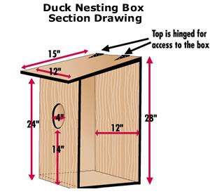 wd box.jpg