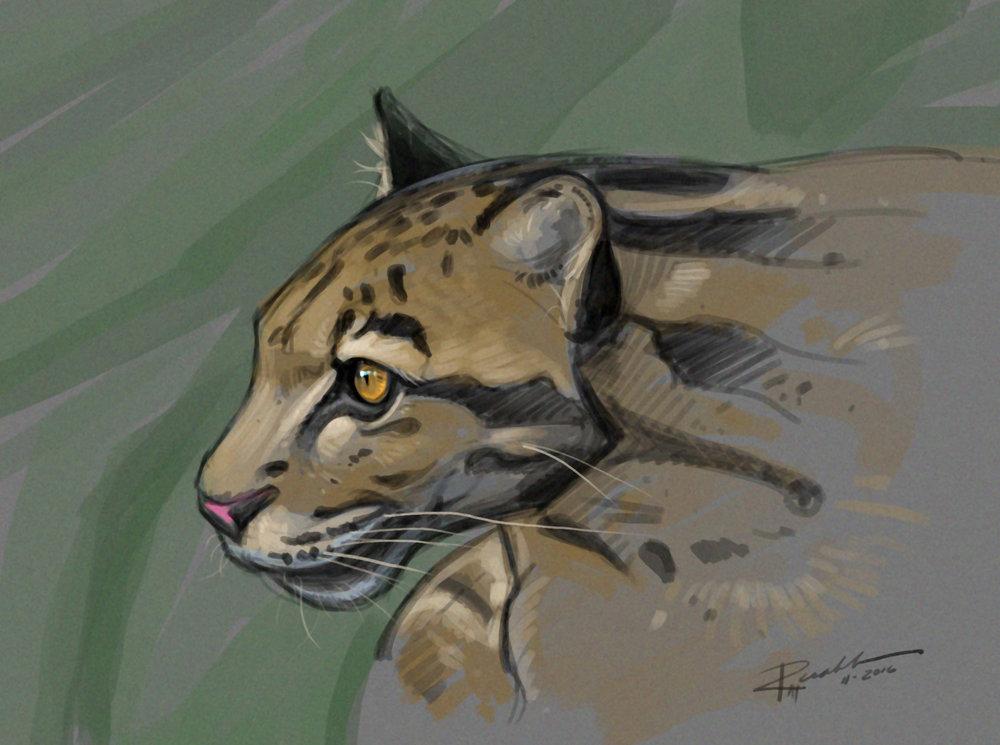 """Leopard"""