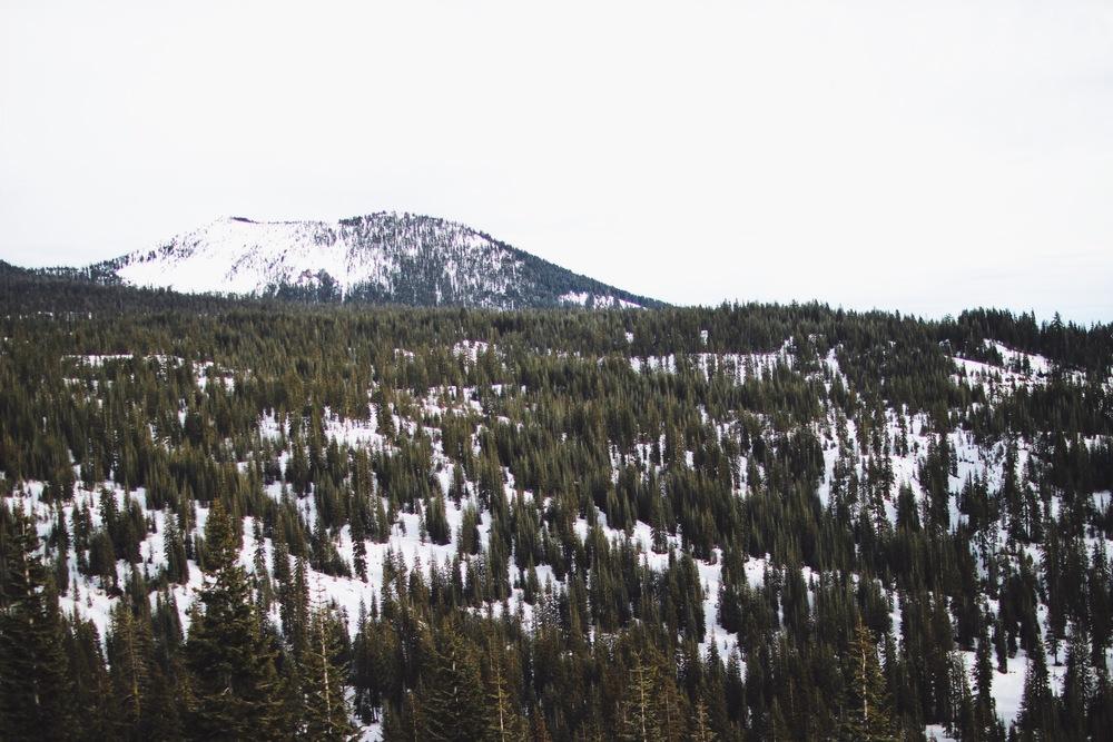 Mount Shasta // Mel Denisse