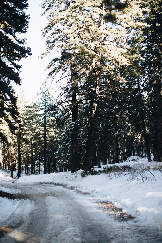 Getaway to Big Bear // Mel Denisse