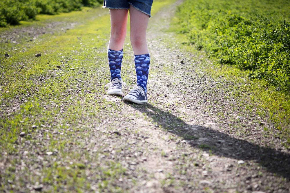 Blueberry Socks