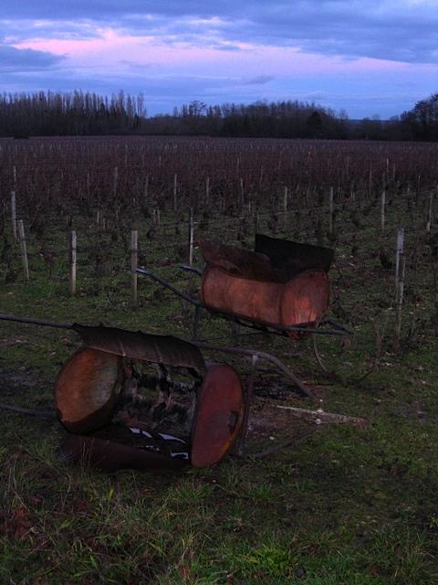 puligny vineyards~hiver.jpg