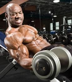 exercicios-para-biceps.jpg