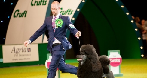 CRUFTS (Channel 4)