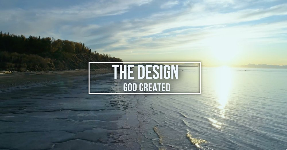 (1) THE DESIGN