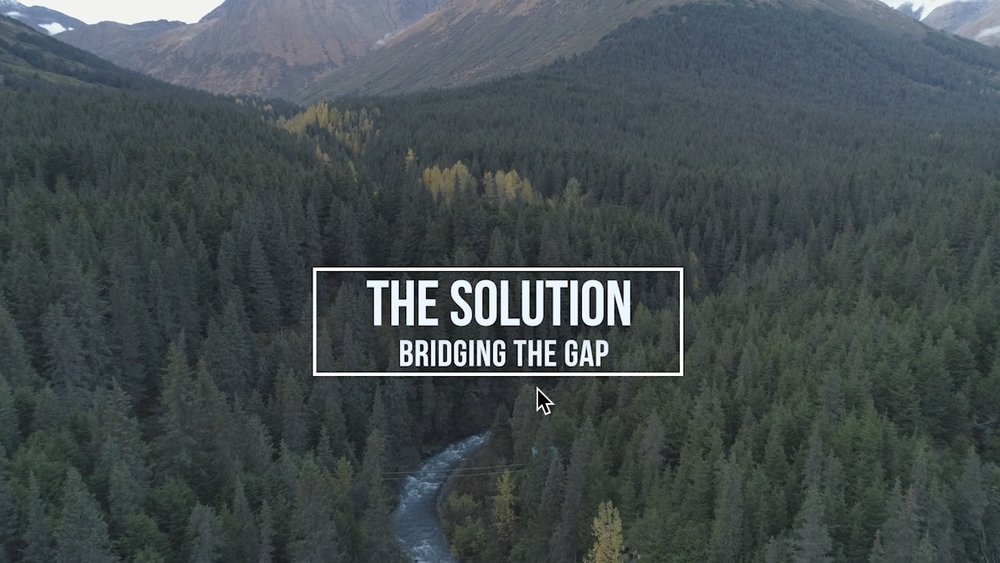 (3)  THE SOLUTION