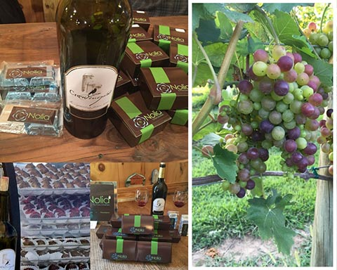 Wine & Chocolate Pairings atCrow Vineyard - If you missed us at CrowFest in September, check back for new Winter 2018 dates for pairing events and more!