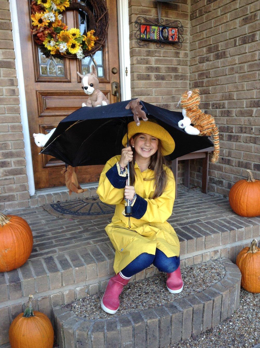 Lily Plewniak - It's Raining Cats and Dogs - stuffed animals, raincoat, hat.JPG