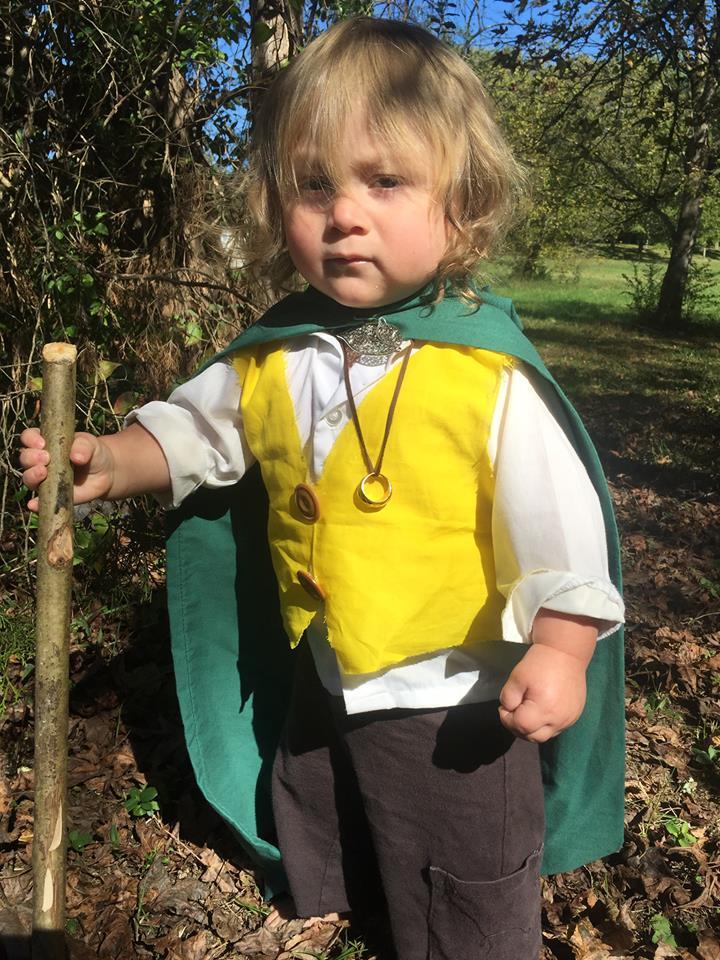 Lord of the Rings - 2015.jpg