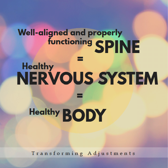 chiropractic-spine-nervous-system-body