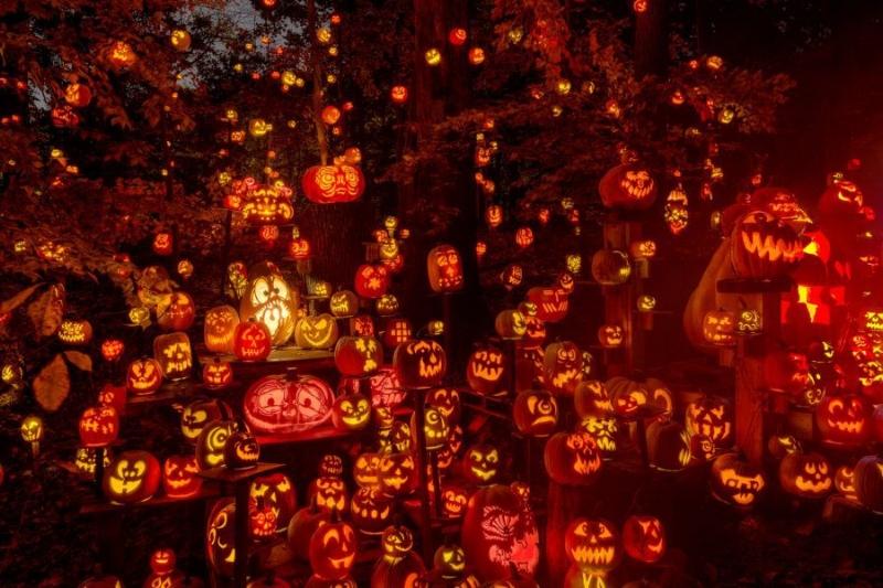Glow: A Jack-O-Lantern Festival