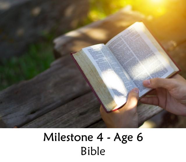 Milestone 4
