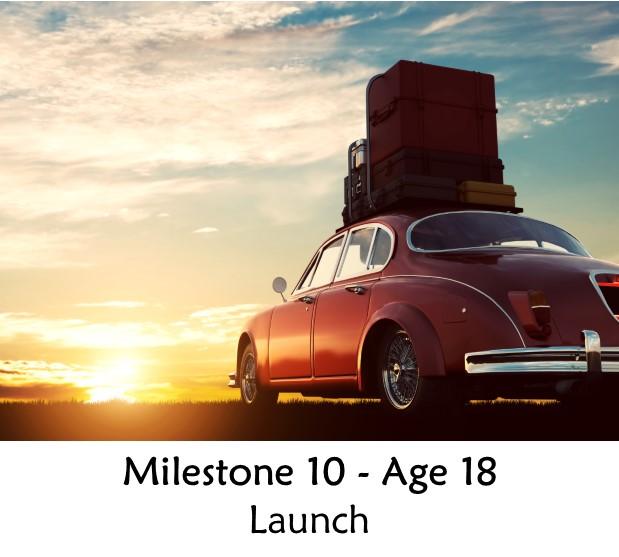 Milestone 10