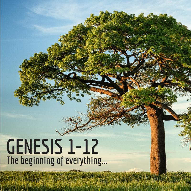 January 7 -- Genesis 1