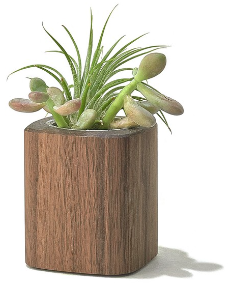 Walnut Planter - Large