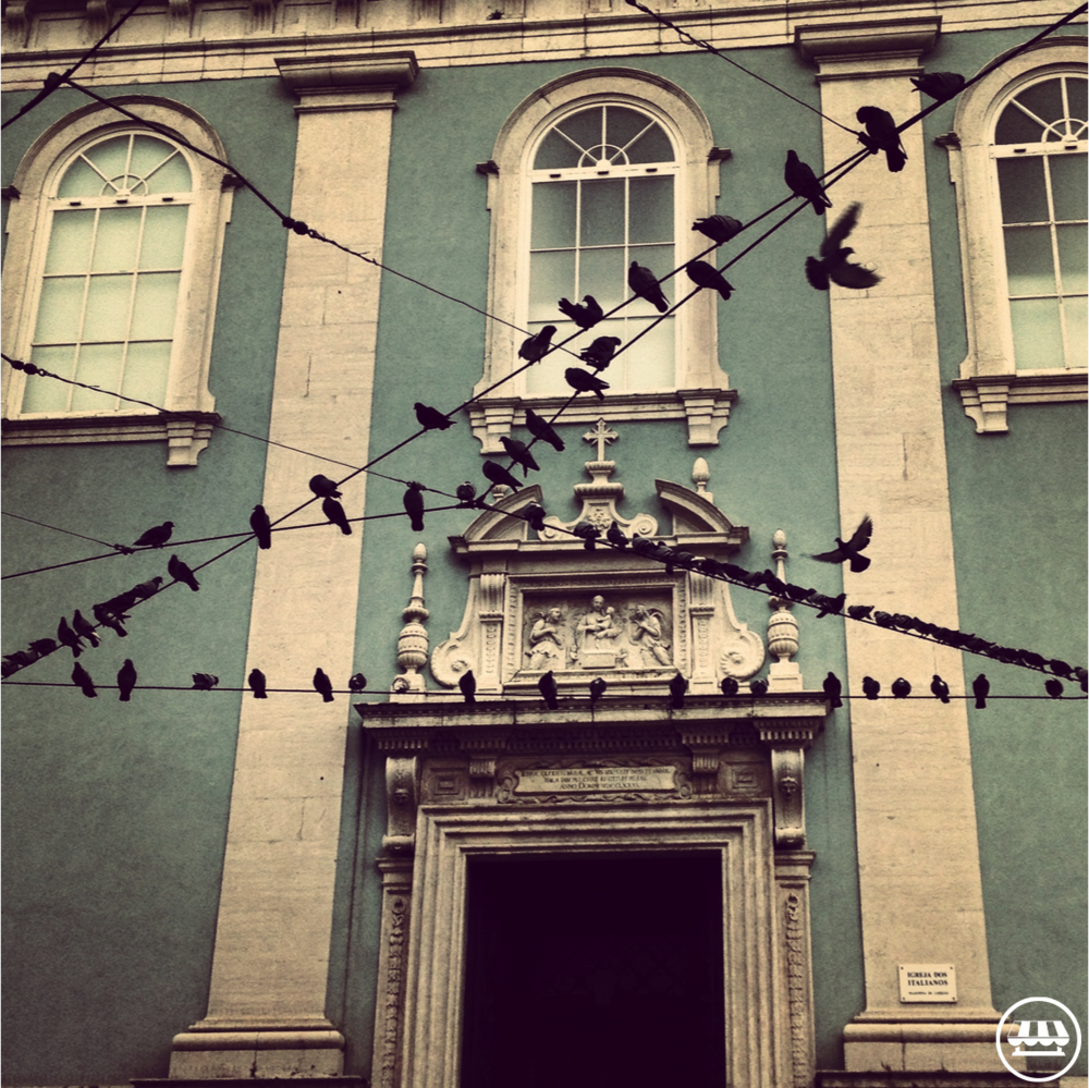 Swallows or Andorinhas are the classic Portuguese Symbol