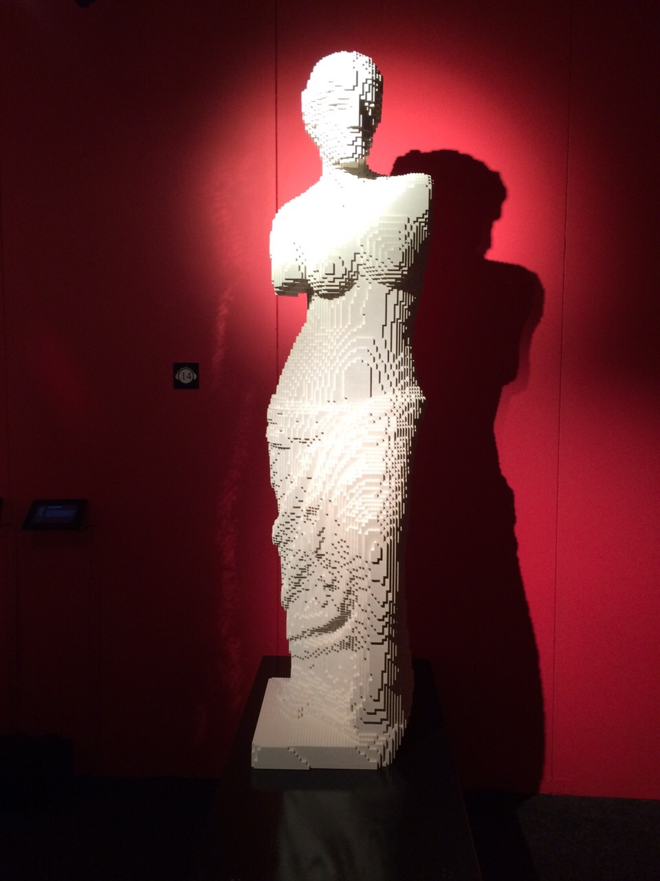 The Art of the Brick _ Venus