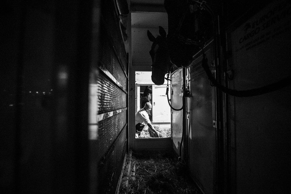seagames-equestrian-bts-jun4-171.jpg