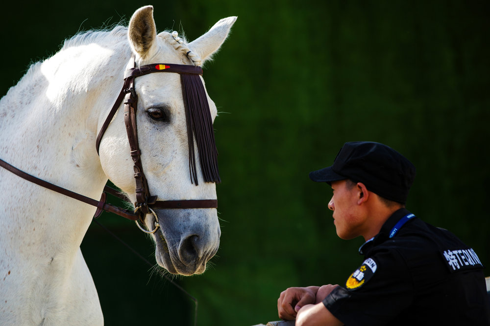 A security guard admires a horse during the Longines FEI World Cup Jumping - China League at Chaoyang Park on May 3, 2016 in Beijing, China. (FEI/Yong Teck Lim)