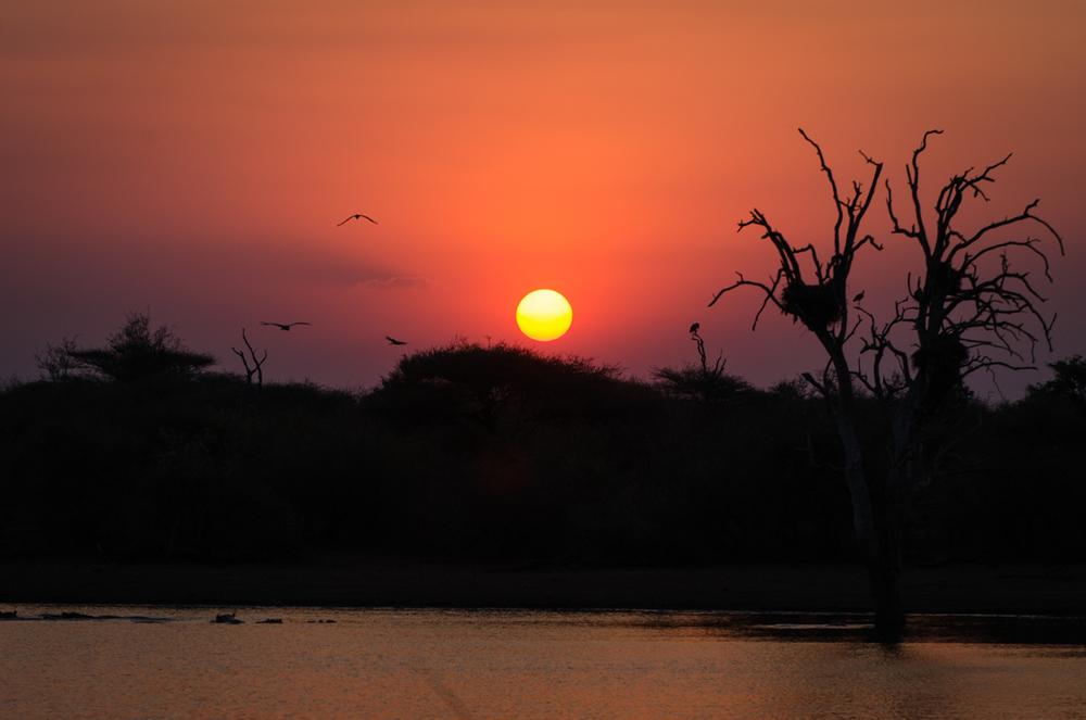 20140825_christoph_schlein_südafrika_wildlife_blog (27 von 43).jpg