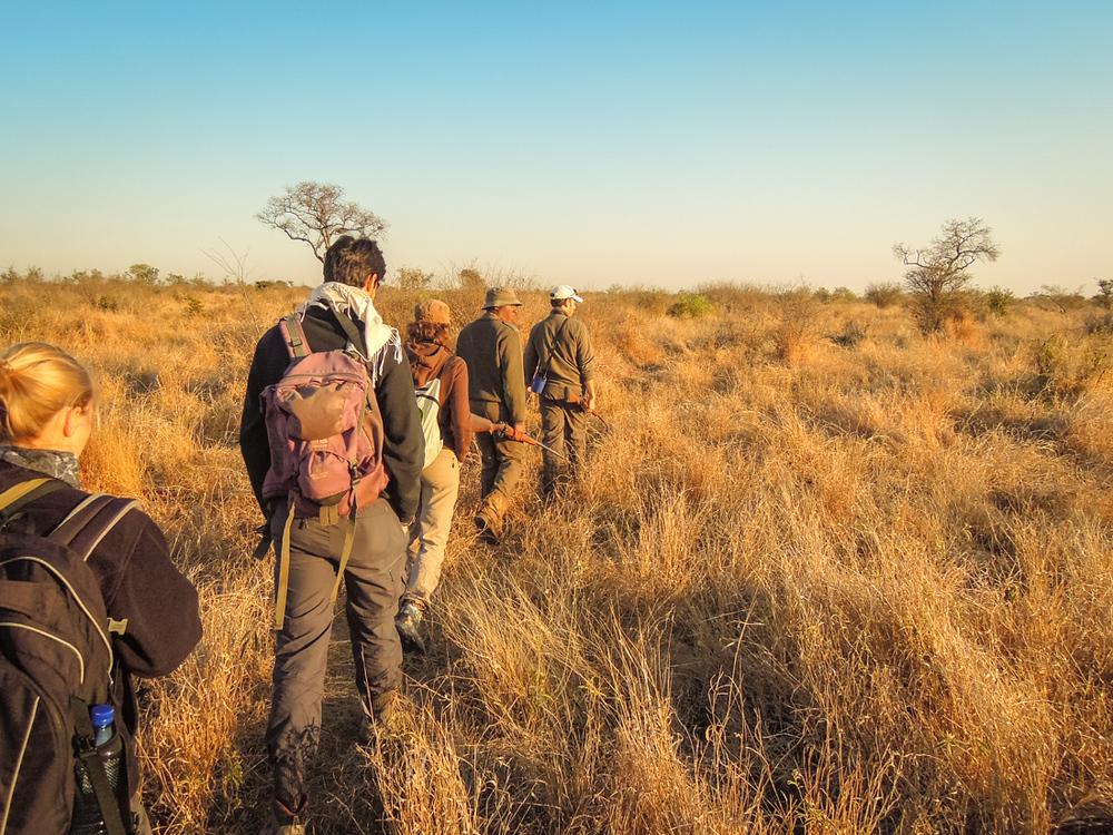 20140825_christoph_schlein_südafrika_wildlife_blog (29 von 43).jpg
