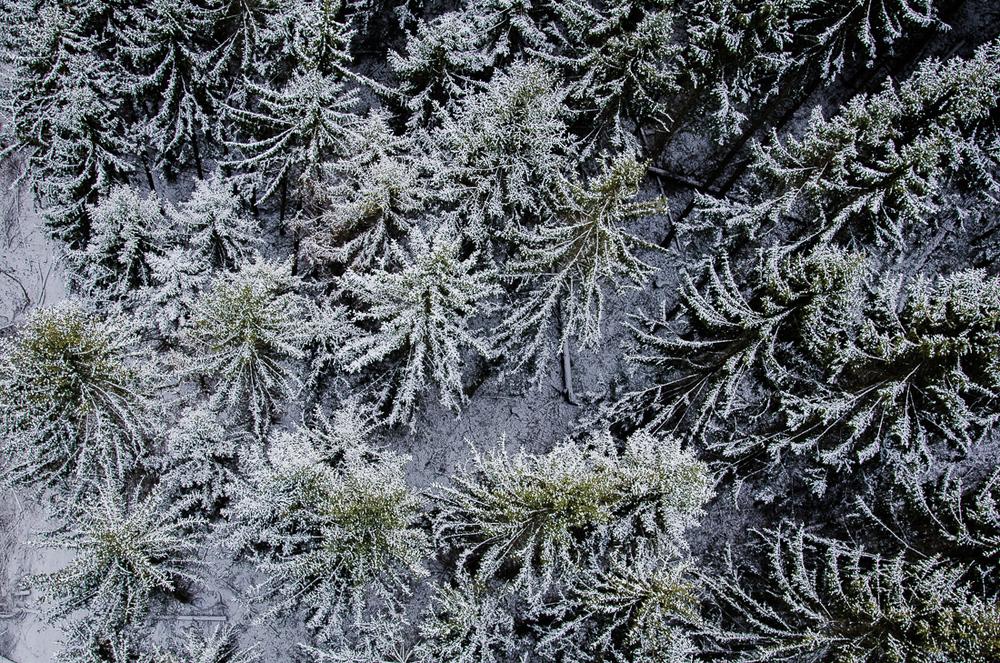 20160117_outdoor_burg_eltz_geierley_christoph_schlein-3526.jpg
