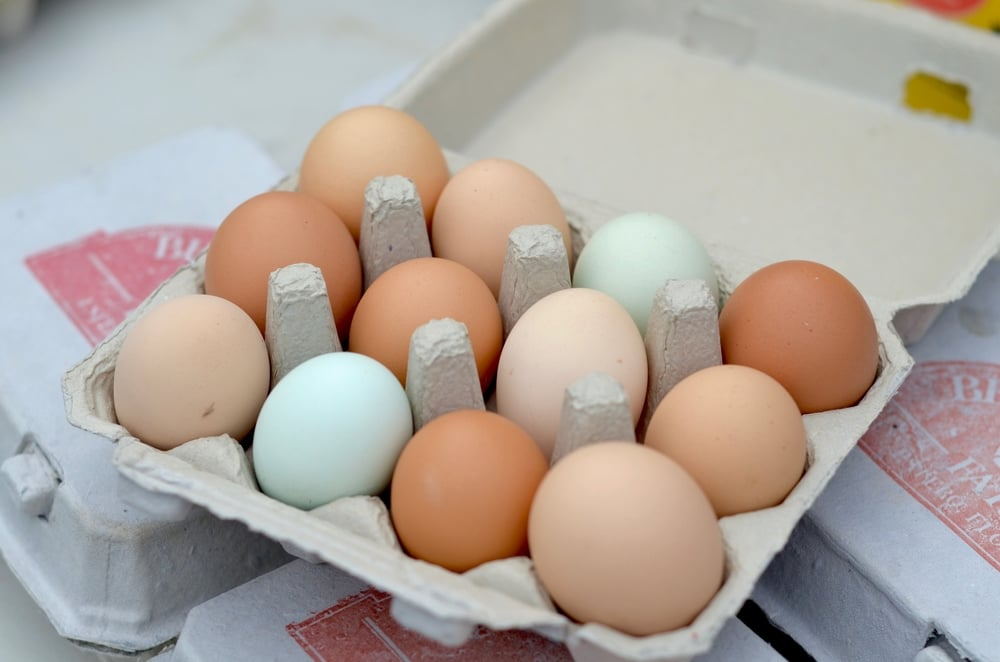 Pasture-raised Organic Chicken Eggs