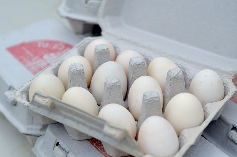 Pasture-raised Organic Duck Eggs