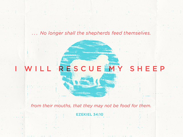 Shepherding Is a Tough Business — Bible Study Magazine
