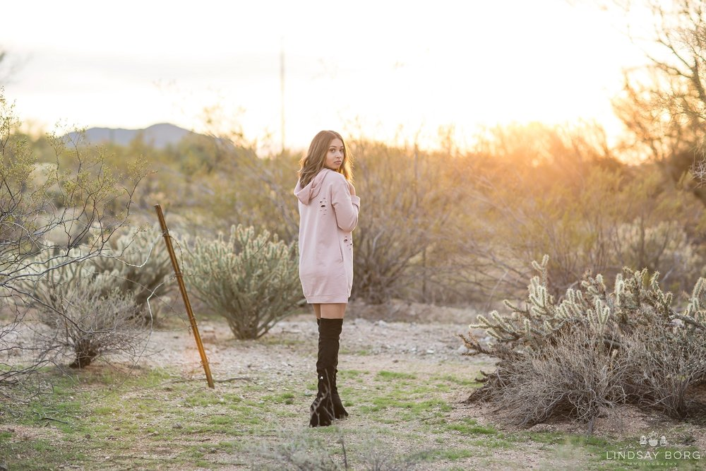 Lindsay-Borg-Photography-arizona-senior-wedding-portrait-photographer-az_0203.jpg