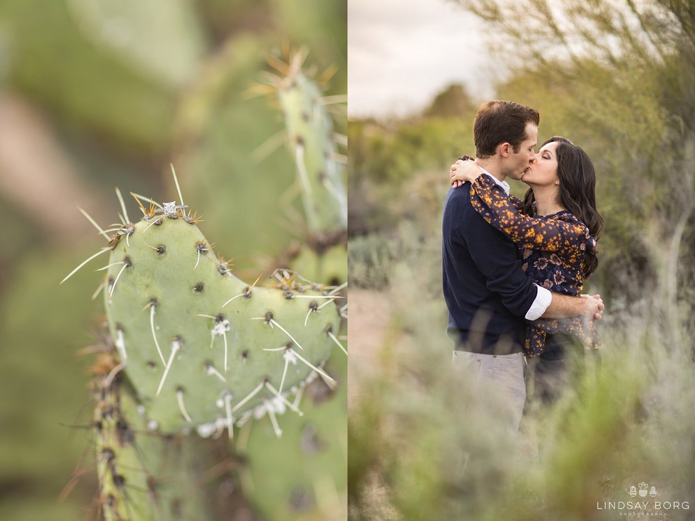 Lindsay-Borg-Photography-arizona-senior-wedding-portrait-photographer-az_0790.jpg