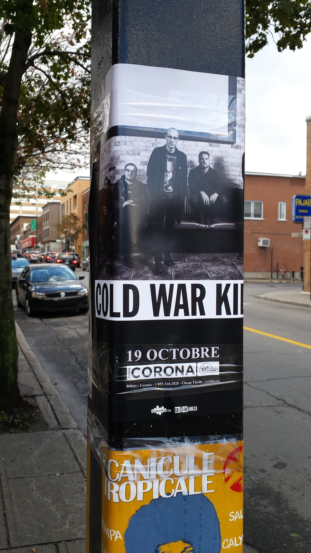 Cold war kids 4.jpg